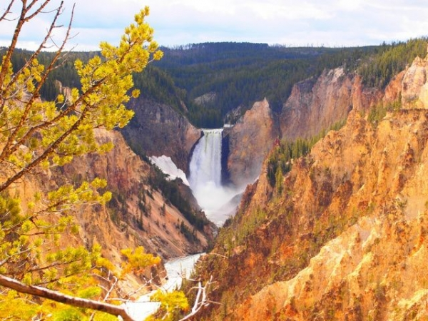 6-Day Yellowstone and Lake Powell Bus Tour: Bryce Canyon, Grand Teton and Salt Lake City**With Affordable LAX Pick-up**
