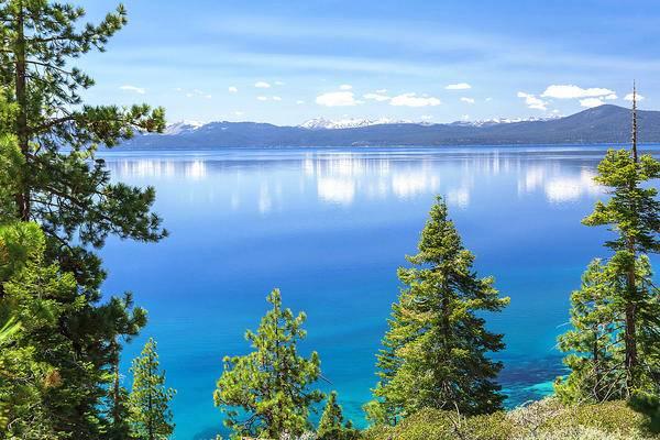 8-Day Salt Lake City, Yellowstone National Park, Mt. Rushmore, San Francisco Tour