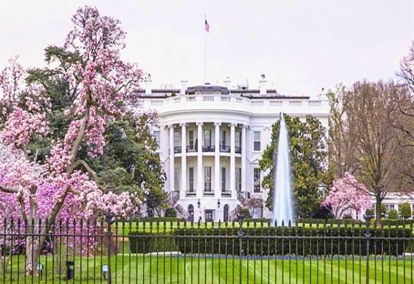3-Day Washington, D.C. Cherry Blossom Bus Tour