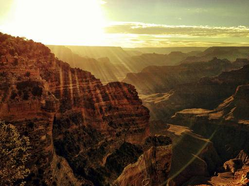 6-Day Bus Tour to Grand Canyon, San Francisco and 17-Mile Scenic Drive from Las Vegas