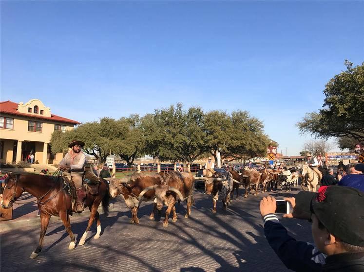 7-Day Texas & Louisiana Tour From Houston: Dallas, Austin, San Antonio, New Orleans