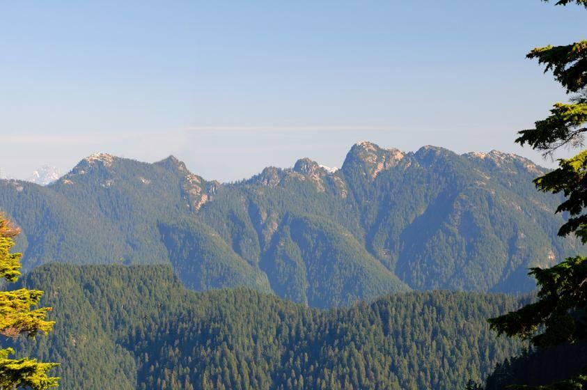 Grouse Mountain & Capilano Suspension Bridge Tour