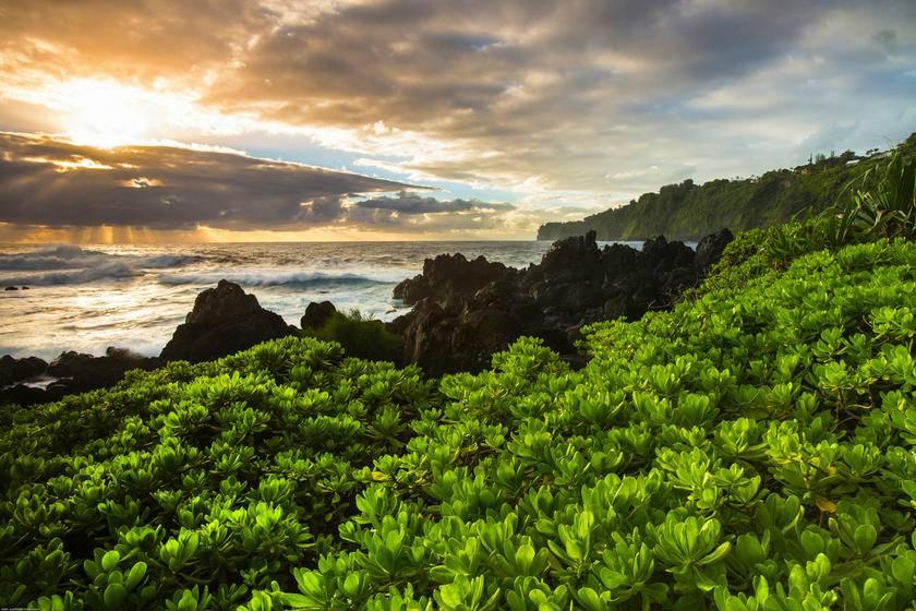6-Day Hawaii Tour Package From Hilo: Oahu, Big Island and Maui