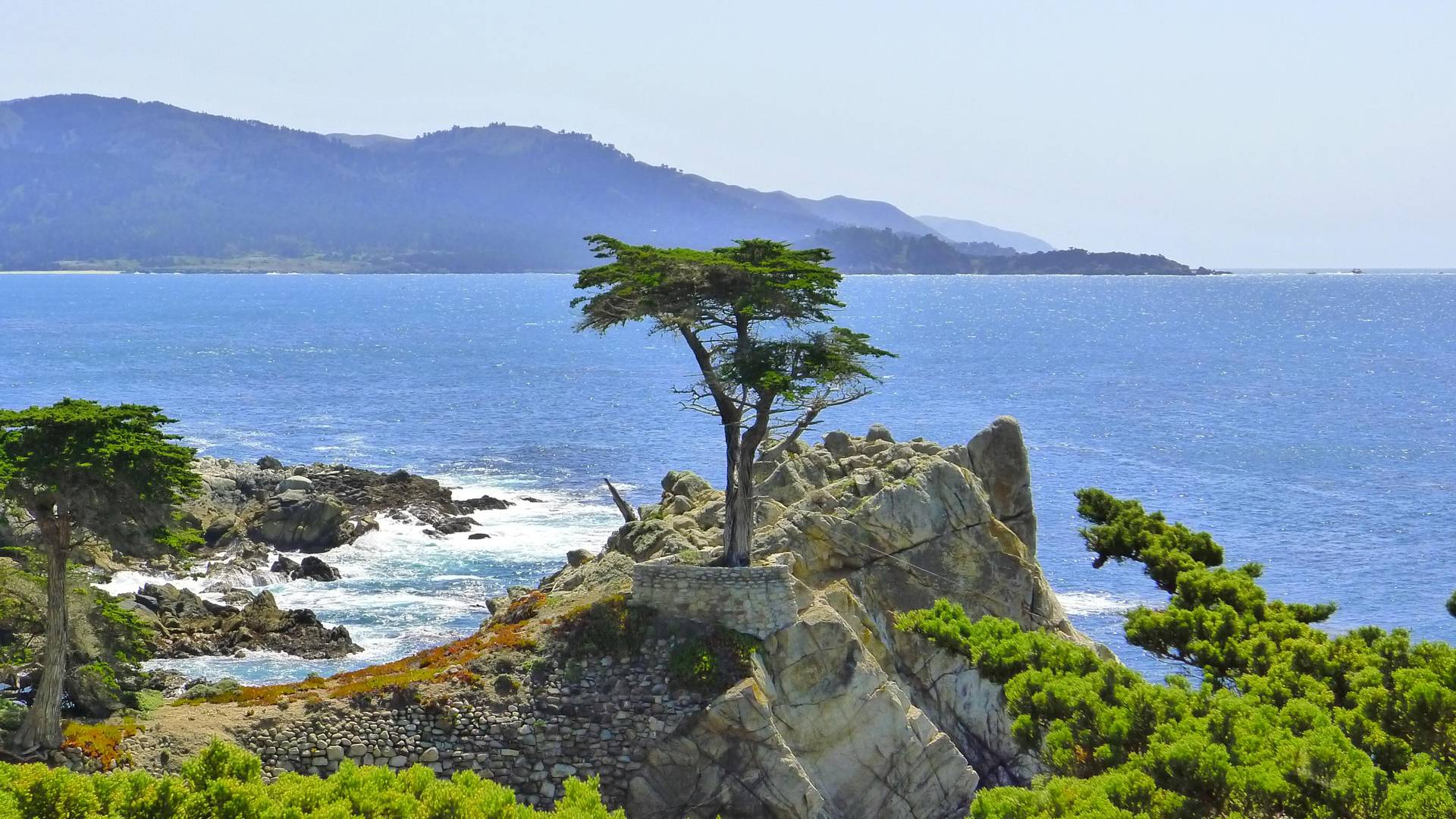 Image result for 17 mile drive pictures