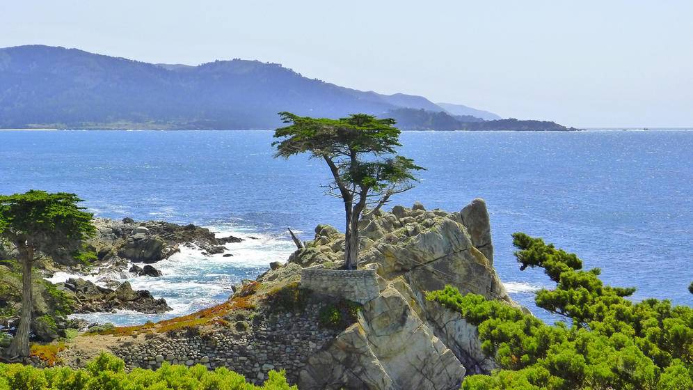 5-Day San Francisco, Monterey, 17-Mile Scenic Drive Tour