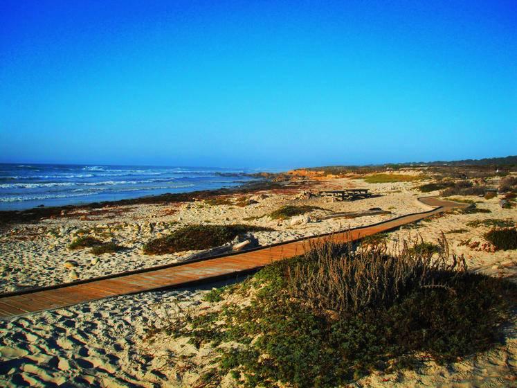 3-Day San Francisco, 17-Mile Drive, Santa Cruz Municipal Wharf & Roaring Camp Tour (With SFO Airport Transfer)