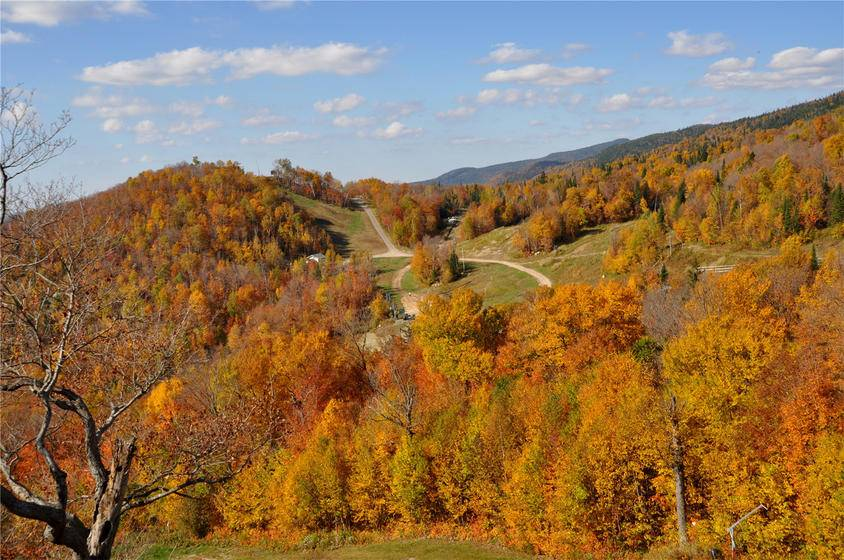 9-Day East Canada Maples Tour: Toronto, Sudbury, Sault Ste. Marie, Agawa Canyon, Montreal and Quebec