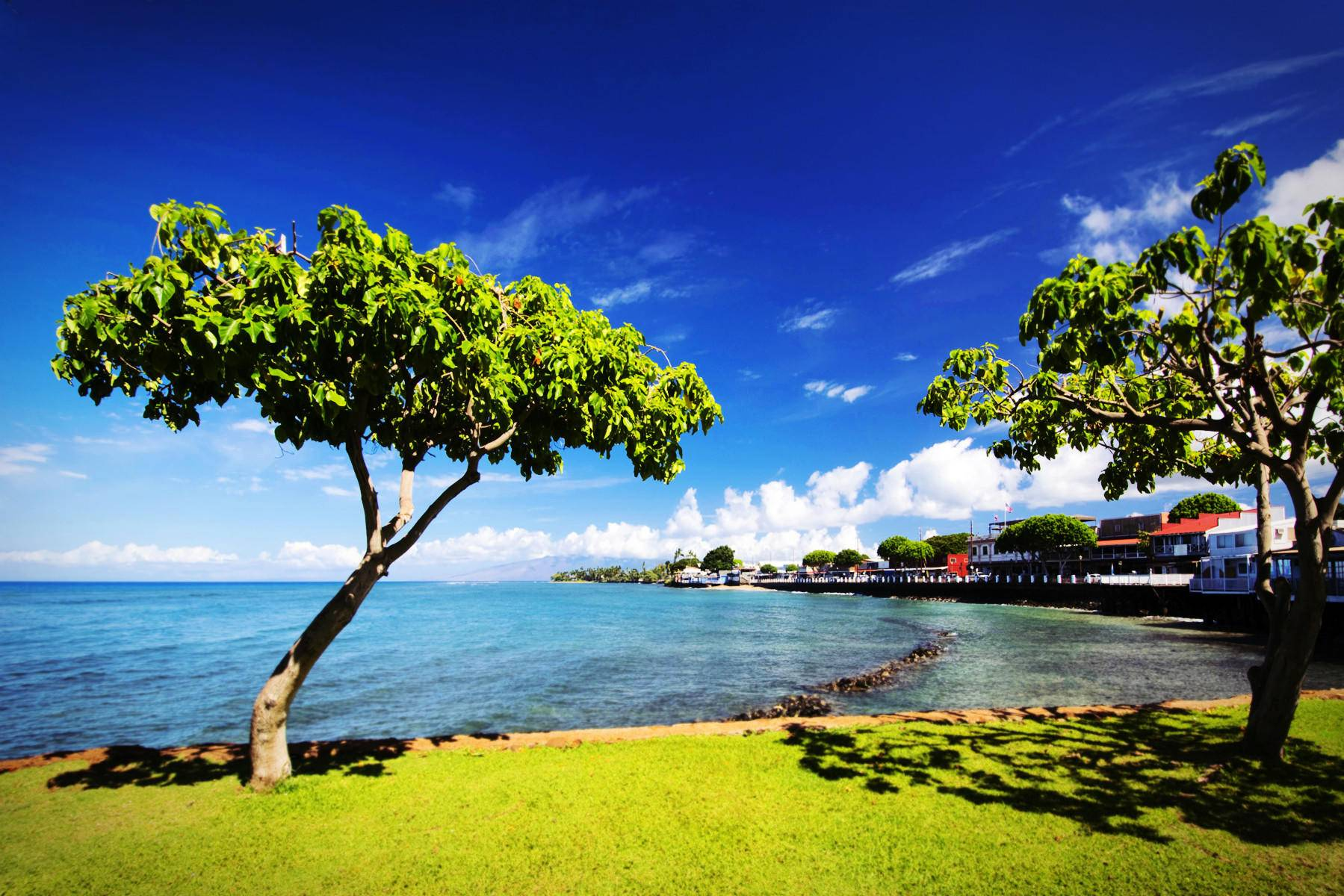 Hawaii Islands From Toronto Vacation Package