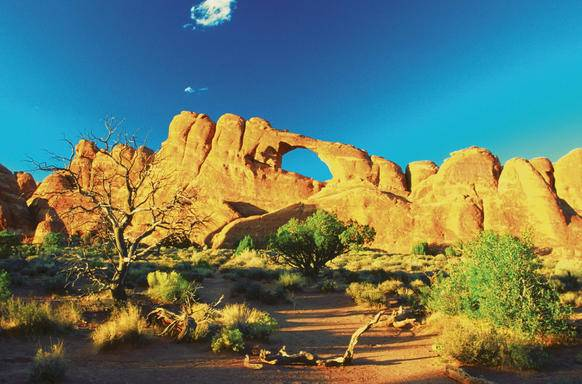 9-Day San Francisco, Yosemite, Bryce Canyon, Zion, Arches National Park, Grand Canyon and Las Vegas Tour