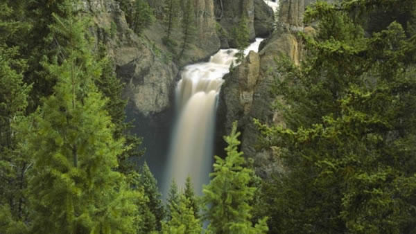 10-Day Yellowstone National Park, West Grand Canyon(Skywalk), West Zion,  Idaho Falls and 17 Miles Bus Tour (Start in San Francisco/End in Los Angeles)