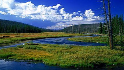 7-Day Yellowstone National Park, West Grand Canyon (Skywalk) Tour From LA