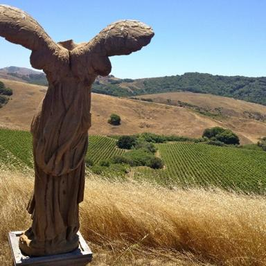 West Marin Wine & Cheese Tour