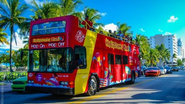 48-Hour Hop-on, Hop-off City Tour with Miami Seaquarium Tour