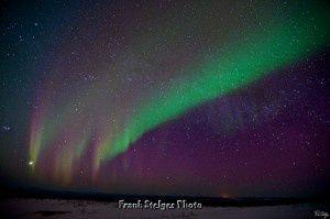 Northern Lights Viewing at Murphy Dome