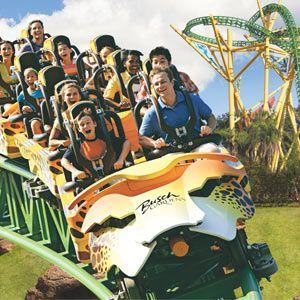 Tampa Bay CityPASS (Save 49% on Busch Gardens plus 4 more top Tampa Bay attractions)