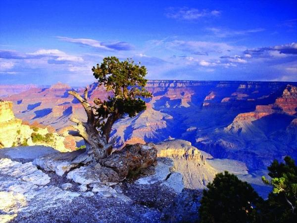 10-Day Antelope Canyon and San Francisco Bus Tour: Horseshoe Bend, Zion National Park, Bryce Canyon and Two Choices of Six Items
