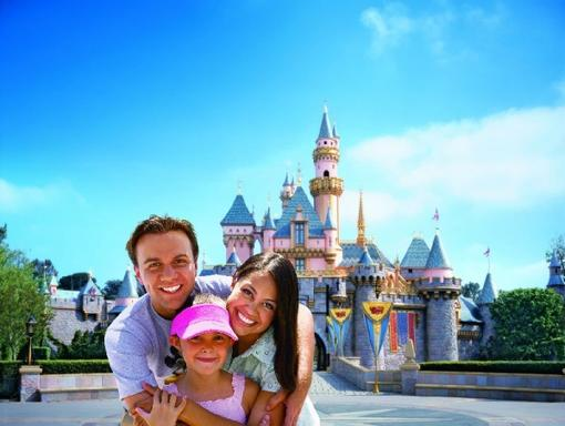 1-Day California Adventure Theme Park Tour