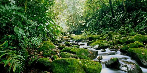 12-Day Trek Hidden Costa Rica Bus Tour (Starts and Ends in San Jose)