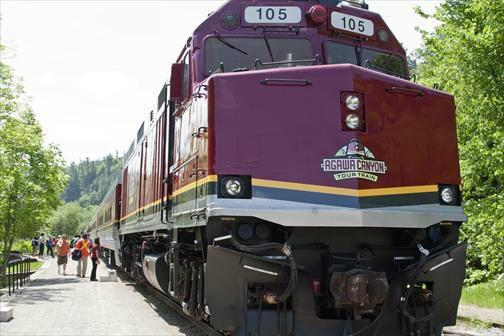 3-Day Agawa Canyon Railway & Algonquin Park Fall Foliage Tour from Toronto