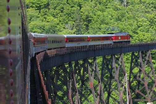 5-Day Agawa Canyon Railway & Algonquin Park Fall Foliage Tour from Toronto