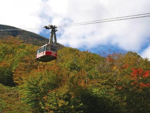1-Day White Mountain Foliage, Flume Gorge and Apple Picking Tour