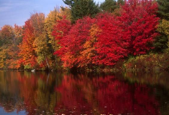 1-Day Lake Winnipesaukee and Cannon Mountain Tour