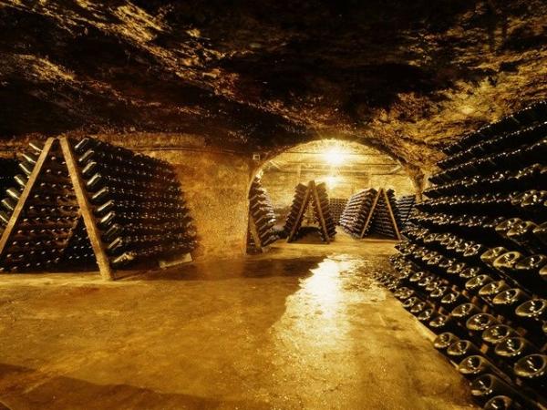 1-Day Excursion to Catalonia Wine Region
