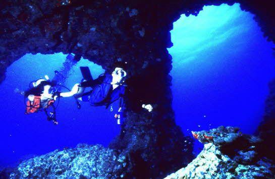 Scuba Dive in Hawaii