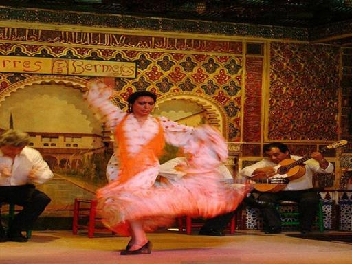 3-Hour Seville Sightseeing Tour with Flamenco Show