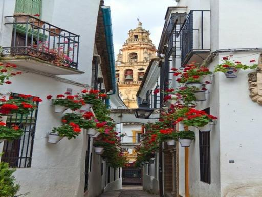 3-Day Andalucia-Costa del Sol Escorted Tour from Madrid