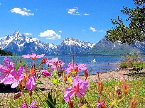 9-Day Enchanting West Coast Tour: Shoshone Falls,Yellowstone, Antelope & Grand Canyon W/ California Theme Parks