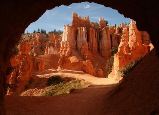 9-Day Enchanting West Coast Tour: Shoshone Falls, Napa, Yellowstone, Antelope & Grand Canyon W/ California Theme Parks
