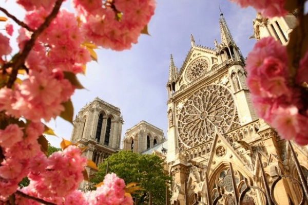 1-Day Notre Dame and the Louvre Guided Tour**w/ Skip-the-Line to the Towers of Notre Dame**