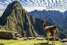 canyon de chelle tours:Mysteries Of The Inca Empire With Arequipa & Colca Canyon