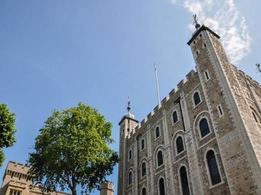 Morning London Sightseeing w/ Private Access to Tower of London