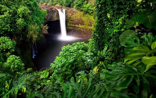 frommers hawaii tour companies:1-Day Hawaii Volcano Eco-Adventure