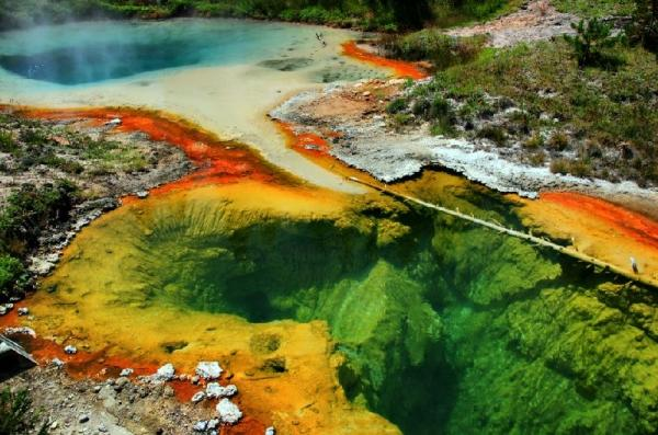 7-Day Yellowstone National Park, Grand Canyon West (Skywalk) Tour: Vegas to LA