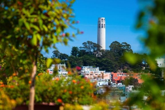 San Francisco City Tour + Muir Woods