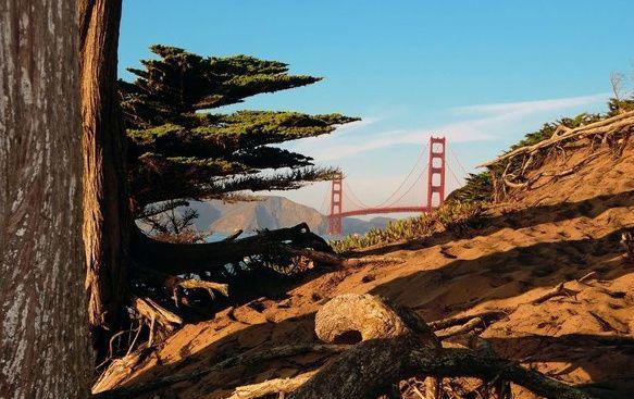 San Francisco Jogging Tour: Golden Gate Park - The Presidio