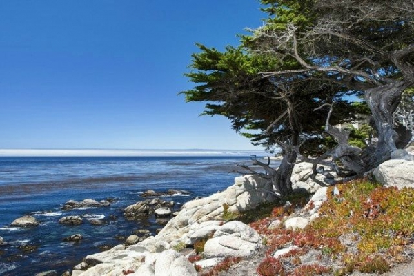 cannery row monterey:The Monterey and Carmel Tour
