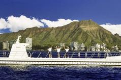 excursion a maui desde honolulu:Atlantis Submarine Tour