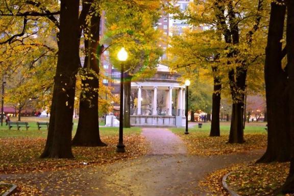 Boston Common Urban Quest