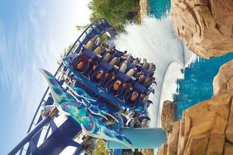 1-Day SeaWorld Orlando Experience