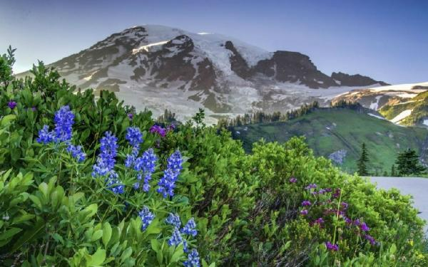 8-Day Mt. Rainier, Olympic NP, Seattle and Portland City Tour