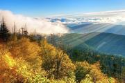 4-Day Tennessee and Smoky Mountains Bus Tour