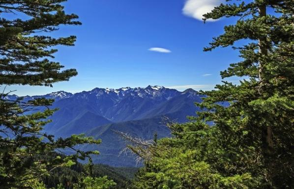 7-Day Olympic National Park, Mount Rainier and Seattle City Tour