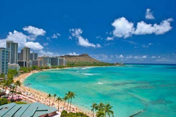 1-Day Oahu Island Tour  - North Shore -  Dole Pineapple Plantation
