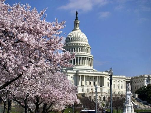 Washington D.C. Hop-on Hop-off Sightseeing