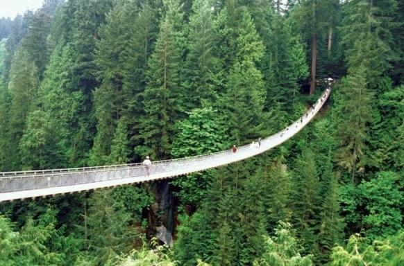 One-Day Vancouver City Tour & Capilano Suspension Bridge