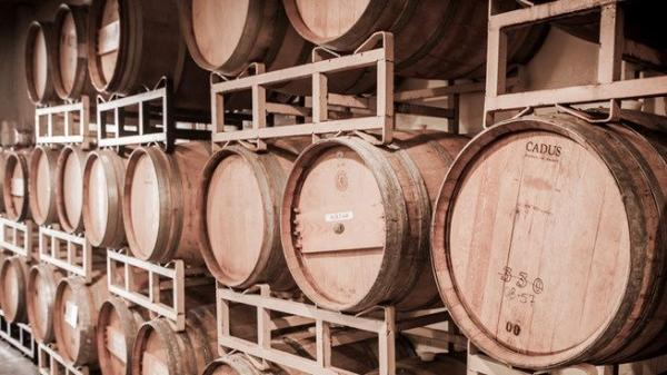 San Francisco Wine Tour: Wine Country in the City